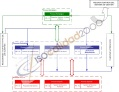 Mapa proceso, ISO, ISO 9001, ISO 14001, OHSAS 18001, ejemplo
